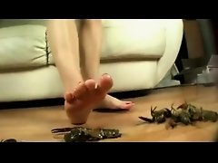 Barefoot crawdad crush - Elisa